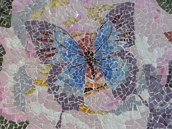 papillon-mosaiq